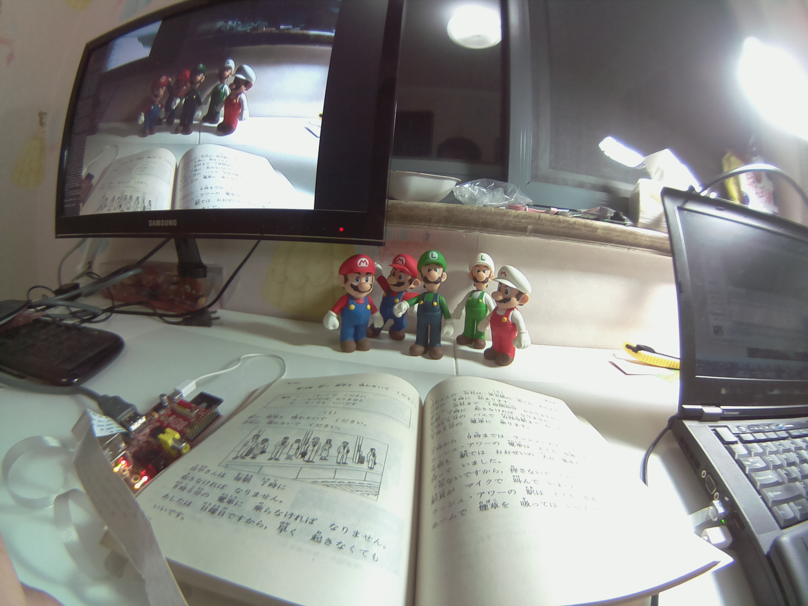 Sample Photos for Different Lens option on Raspberry Pi Camera