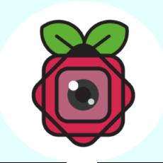 Native Raspberry Pi Cameras