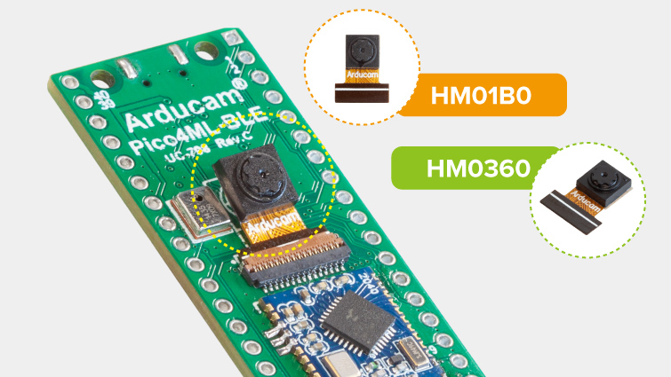 pico4ml ble supports interchangable camera modules