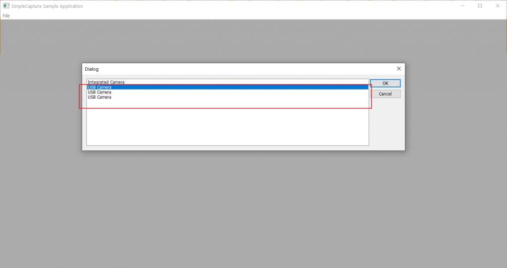 webcams having duplicate device names in windows