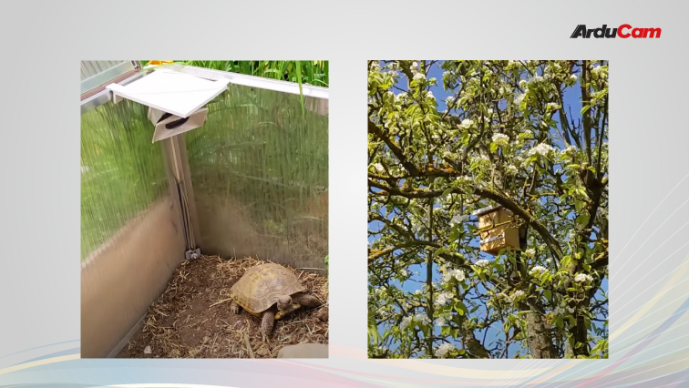 pet detector camera and nest camera projects featuring ov2640 or ov7670 cameras