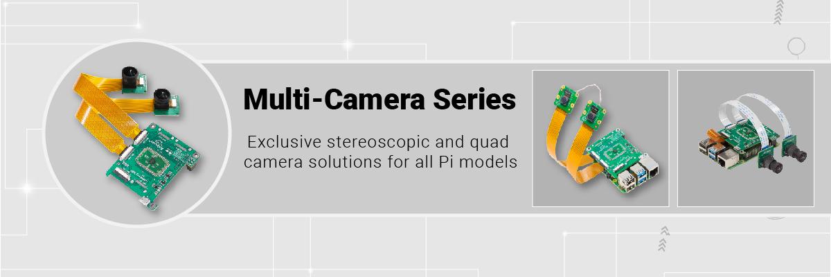 multi stereoscopic vision 1